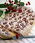 Cherry cake with icing sugar