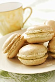 Macaroons filled with pistachio cream
