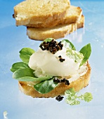 White toast topped with Vacherin Mont d'Or & black truffle