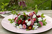 Wreath of Bellis and horned violets on table out of doors