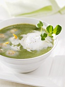 Watercress soup with sour cream