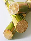 Three stalks of sugar cane