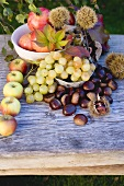 Sweet chestnuts, pomegranates, grapes, apples & autumn leaves