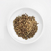 Fennel seeds in white dish