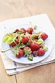 Fresh organic strawberries on plate