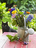 Bunch of flowers in watering can, cat in background