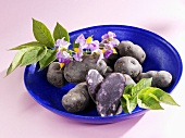 Several truffle potatoes with flowers in blue dish