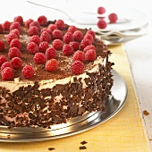 Raspberry cake with grated chocolate