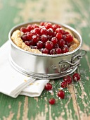 Redcurrants in puff pastry shell in a springform pan