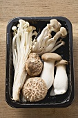 Assorted mushrooms in plastic tray