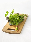 Bunch of parsley on chopping board with mezzaluna
