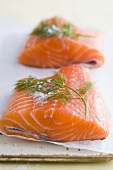 Salmon fillets with salt and dill