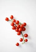 Cherry tomatoes (overhead view)