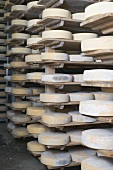 Cheeses stored on wooden shelves in order of age