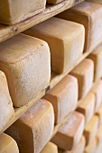 Blocks of cheese stored on wooden shelves