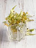 Lime flowers in a glass container