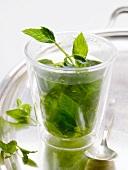 Glas Pfefferminztee mit frischer Minze