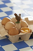 Eggs in opened egg box with model hen