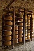 Parmesan cheeses stored on wooden shelves