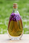 Sweet violets in bottle of oil