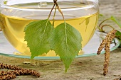 Birch leaf tea in glass cup