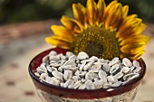 Sunflower seeds and sunflower in glass bowl
