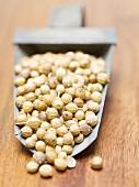 Coriander seeds in metal scoop