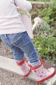 Child watering herbs in garden