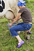 Frau melkt eine Kuh