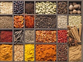 Various spices in a type case