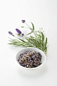 Fresh lavender and dried lavender flowers