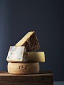 Various hard cheeses from France