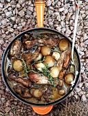 Pollo all'orvietana (Hühnchen in Wein mit Zwiebeln geschmort)