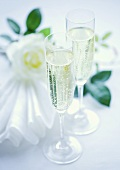 Two champagne glasses and a white rose