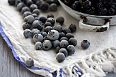 Frozen blueberries on a dish cloth