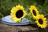 Sonnenblumen auf Topfdeckel aus Email