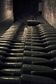 Champagne in storage in Taittinger, Reims, France