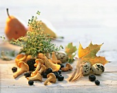 Still life with chanterelles, quail's eggs and herbs