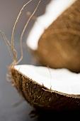 Coconut, broken open