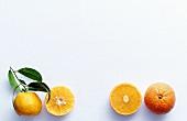 Mandarin and clementine