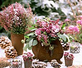 Winter arrangement of Erica, ornamental cabbage & pine cones