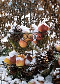 Wire stand with moss, apples and pine cones in snow