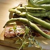 Dicke Bohnen, Speck, Bohnenkraut (Zutaten der Kölschen Küche)