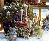 Christmas still life: pine, Erica, Pernettya
