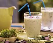 Kräuter-Joghurt-Shake