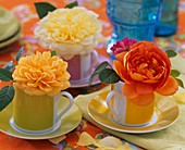Rosenblüten in kleinen Tassen