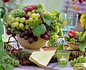 Weintrauben in Schalen