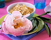 A bowl of cornflakes decorated with a peony