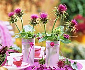 Milk thistle (Silybum marianum) in pink glasses