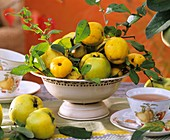 Quinces in a beige metal bowl